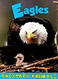 img - for Eagles (Backyard Animals) book / textbook / text book