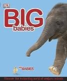 Big Babies Little Babies