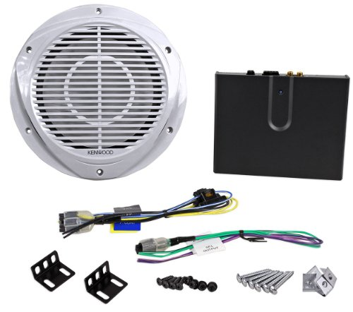 """Kenwood P-Wd250Mrw 10"""" 200 Watt Marine Subwoofer And Class D Amplifier With Low Pass Crossover Package"""