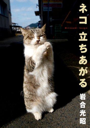ネコ 立ちあがる―ニッポンの猫写真集