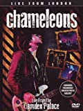 The Chameleons - Live From London [DVD] [2012] [NTSC]