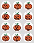 12 Pumpkin Halloween rice paper fairy...
