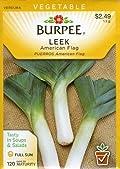 Burpee 50951 Leek American Flag Seed Packet
