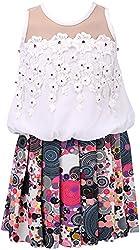 Sheetal Fashion Girls' Chiffon Dress (SF-36_6-12 Months, White & Multi-Coloured)