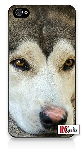 Siberian Husky Dog UV Print (not a sticker) Premium Direct Print iphone 6 Quality Hard Snap On Case for iphone 6/Apple iphone 6 - AT&T Sprint Verizon - White Case PLUS Bonus RCGRafix The Best Iphone Business Productivity Apps Review Guide
