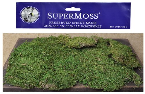 super-moss-preserved-bright-green-natural-sheet-moss-country-primitive-craft-floral-decor