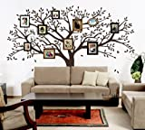 Family Photo Tree Wall Decor Wall Sticker Vinyl Wall Decal Stickers Living Room Bed Baby Room