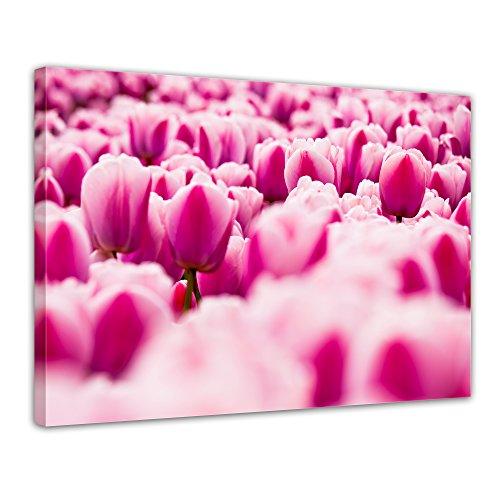 "Bilderdepot24 Leinwandbild ""Pinke Tulpen"" - 70x50 cm 1 teilig - fertig gerahmt, direkt vom Hersteller"