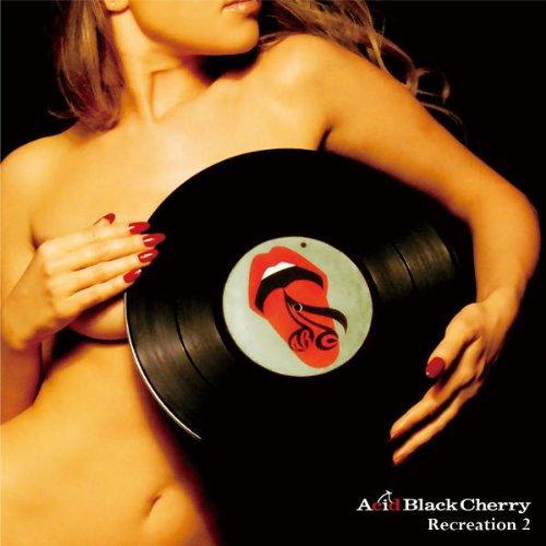 【Acid Black Cherry】メンバー紹介。実は豪華なサポートメンバー!?