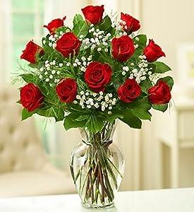 1800Flowers – Rose Elegance Premium Long Stem Red Roses – 12 Stem Red Roses