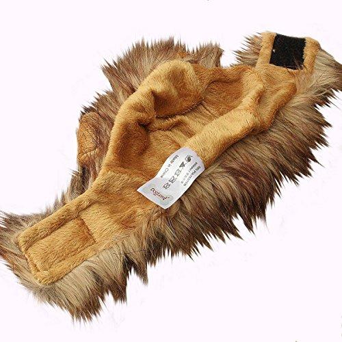 focuspet costume chapeau crini re de lion mane d guisement pour chat chien chiot animal. Black Bedroom Furniture Sets. Home Design Ideas