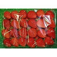 九州産の果物 長崎県産 イチゴ(さちのか) Mサイズ4パックセット 直売所販売用