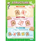 Structure Music Educational Wall ChartPoster in laminated paper A1 850mm x 594mm