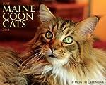 Just Maine Coon Cats Calendar 2015