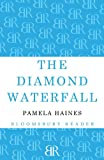 img - for The Diamond Waterfall book / textbook / text book