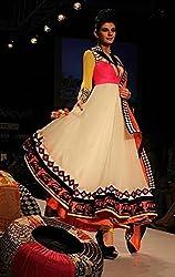JJR Store Designer Cream Net Embroidered Dress material