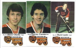 MEDICINE HAT TIGERS 1983-84 Police Hockey 23 Card COMPLETE TEAM SET Shane Churla Mark... by Police