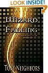 Wizard Falling (The Five Kingdoms Boo...