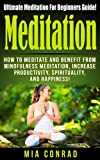 Meditation: Meditation For Beginners - How To Meditate, Mindfulness Meditation, Productivity, Spirituality, And Happiness! (Meditation For Beginners, Mindfulness ... To Meditate, Mindfulness) (English Edition)