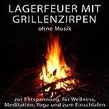 Lagerfeuer mit Grillenzirpen ohne Musik zur Entspannung, für Wellness, Meditation, Yoga und zum Einschlafen