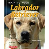 Training Your Labrador Retriever: 2nd Edition (Training Your Dog)by September Morn