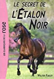 Le secret de l'�talon noir