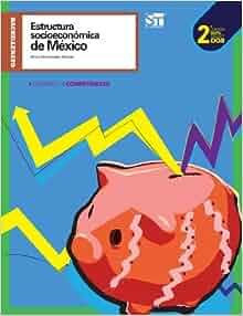 Estructura Socioeconómica de México. Segunda Edición