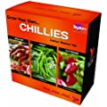 GROW YOUR OWN CHILLI STARTER KIT