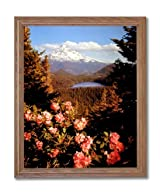 Mount Hood Lake Trees Flowers Landscape Home Decor Wall Picture Oak Framed Art Print