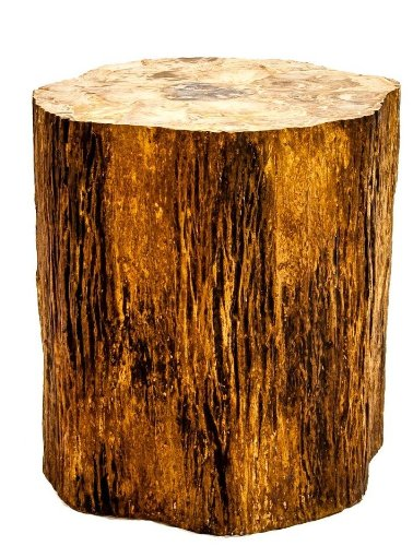 Control Brand FM108NATURAL Good Form Tree trunk dining table with petrified wood inlay