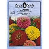 Zinnia, California Giant Mix