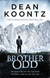 Dean Koontz Brother Odd (Odd Thomas 3)