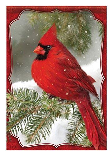 Red Cardinal 28