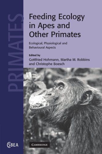Feeding Ecology In Apes And Other Primates (Cambridge Studies In Biological And Evolutionary Anthropology)