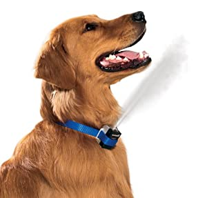 Petsafe Premier Gentlespray Citronella Anti-bark Dog Collar by Radio Systems