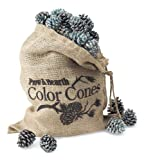 Color-Changing Fireplace Color Cones - 1 lb. Refill Bag