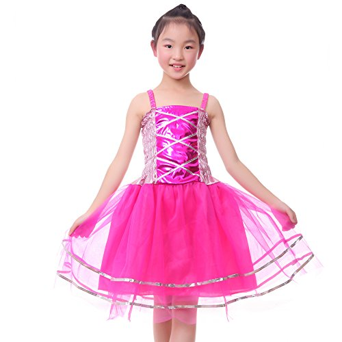 Anleolife Kids Girl Tutu Skirts Dance Ballet Princess Birthday Tutus Dress Gift Party (large, hot (Ballet Dancing Costume)