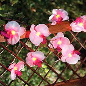 Solalux Set of 12 Orchid Flower Garden Solar String Lantern Fairy Lights Lamps