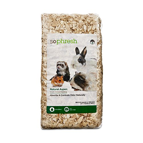 So Phresh Natural Aspen Small Animal Bedding, 500 cu. In. 51OzzUHNhlL