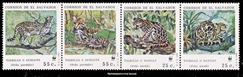 el-salvador-25c-and-25c-ocelots-and-50c-and-50c-margays-world-wildlife-fund-strip-of-four-scott-1194