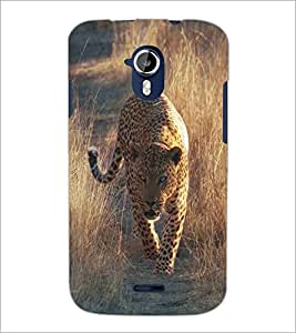 PRINTSWAG LEAPORD Designer Back Cover Case for MICROMAX A117 CANVAS MAGNUS