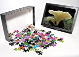 Photo Jigsaw Puzzle of JPF-13318 Ghost F...