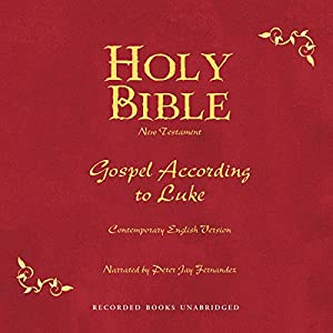 Holy Bible, Volume 24 Audiobook