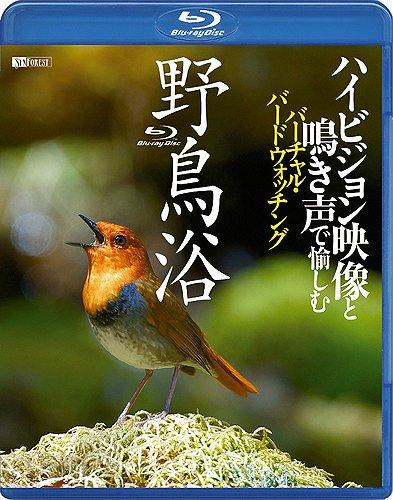 野鳥浴 ハイビジョン映像と鳴き声で愉しむバーチャル・バードウォッチング