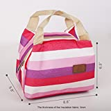 Wis-Done(TM) XB02 Insulated Lunch Bag Small Grocery Food Handbag Zipper Ice Tote for Men Women Kids (Pink)