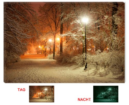 Startonight Canvas Wall Art Winter Park Warm Light, Seasons USA Design for Home Decor, Dual View Surprise Artwork Modern Framed Ready to Hang Wall Art 31.5 X 47.2 Inch 100% Original Art Painting!