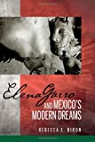 Elena Garro and Mexico's Modern Dreams (Bucknell Studies in Latin American Literature and Theory)