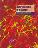 img - for Neuroscience At A Glance book / textbook / text book