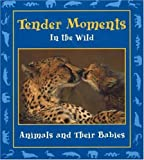 Tender Moments in the Wild: Animals and Their Babies (Moments in the Wild series)