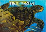 Chelonia : Return of the Sea Turtle